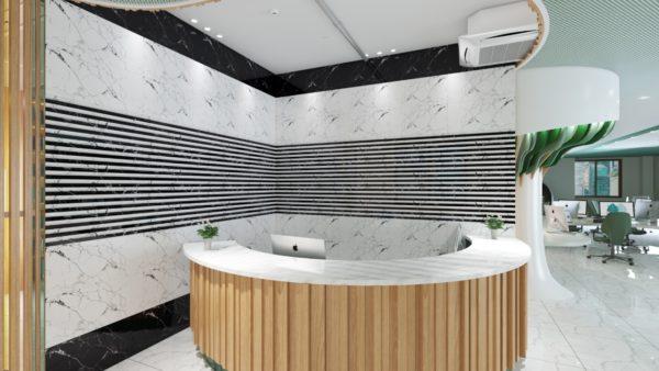 1192 - 12x24 Wall Tiles