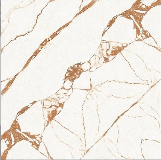24x24 Digital Vitrified Tiles - Bookmatch Series Single Design (1)