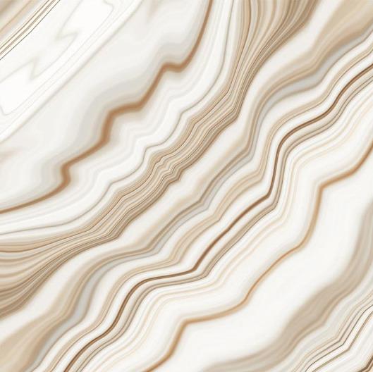 24x24 Digital Vitrified Tiles - Bookmatch Series Single Design (29)