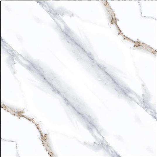 24x24 Digital Vitrified Tiles - Bookmatch Series Single Design (45)