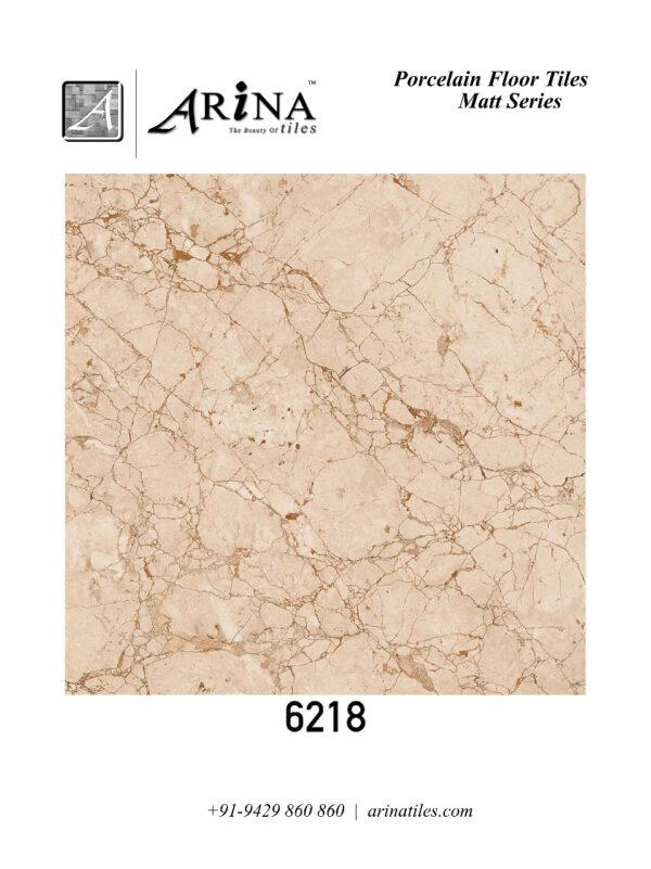 6218 - 24x24 Porcelain Floor Tiles (61)