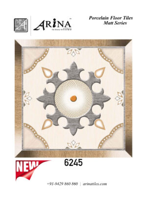 6245 - 24x24 Porcelain Floor Tiles (6)