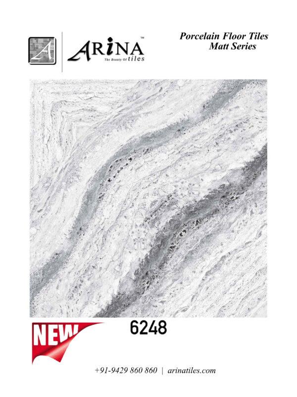 6248 - 24x24 Porcelain Floor Tiles (9)