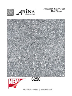 6250 - 24x24 Porcelain Floor Tiles