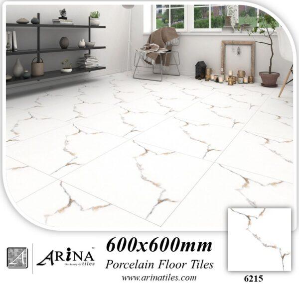 Arina 24x24 Porcelain Tiles 6215