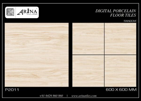 P2011- 24x24 Porcelain Floor Tiles