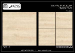 P2016- 24x24 Porcelain Floor Tiles