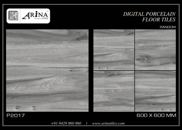 P2017- 24x24 Porcelain Floor Tiles