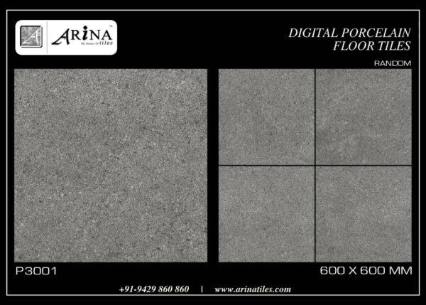 P3001- 24x24 Porcelain Floor Tiles
