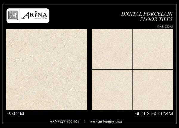 P3004- 24x24 Porcelain Floor Tiles