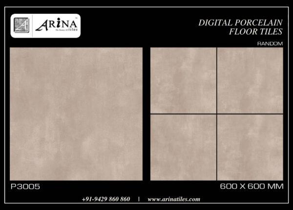 P3005- 24x24 Porcelain Floor Tiles