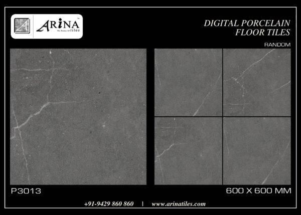 P3013- 24x24 Porcelain Floor Tiles