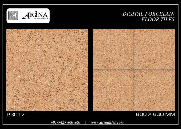 P3017- 24x24 Porcelain Floor Tiles