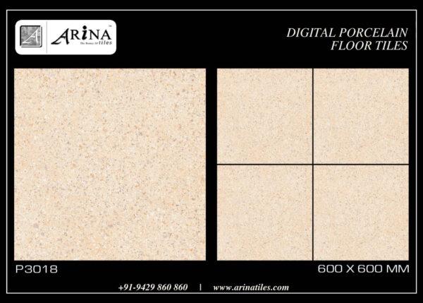 P3018- 24x24 Porcelain Floor Tiles