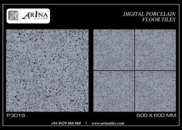 P3019- 24x24 Porcelain Floor Tiles