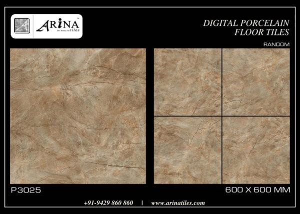 P3025- 24x24 Porcelain Floor Tiles