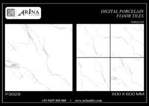 P3029- 24x24 Porcelain Floor Tiles
