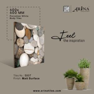 P5007- 24x24 Porcelain Floor Tiles