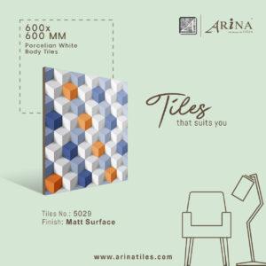 P5029- 24x24 Porcelain Floor Tiles